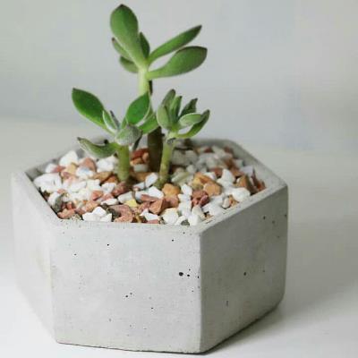 گلدان-بتنی-شش-ضلعی